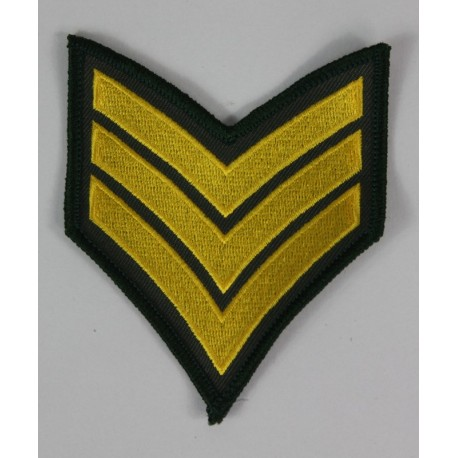 United States Army Special Forces Patch Badge Embroidered 2021/155