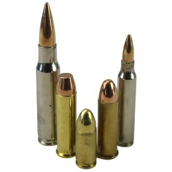 Collectors Bullet Pack Real bullets 5 Different Sizes