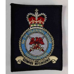 Factory Overrun RAF No22 Training Group HQ Embroidered Patch 95x75mm